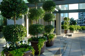 Hodgins-et-associes-architectes-paysagistes-Les_Verrieres-3