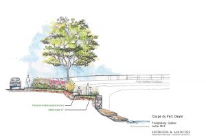 Hodgins-heta-architectes-paysagistes-Coupe du Parc Dwyer
